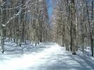 inverno-4